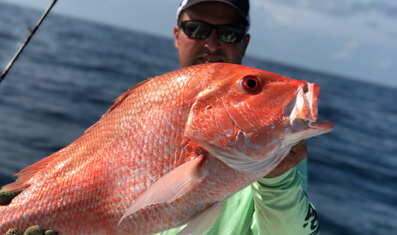 Offshore Red Snapper Trips